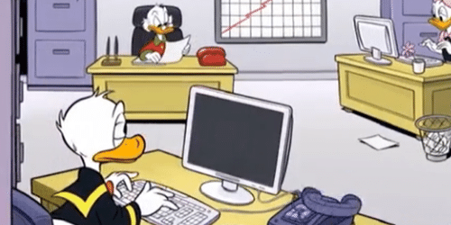 Typecursus Ducktypen 2021